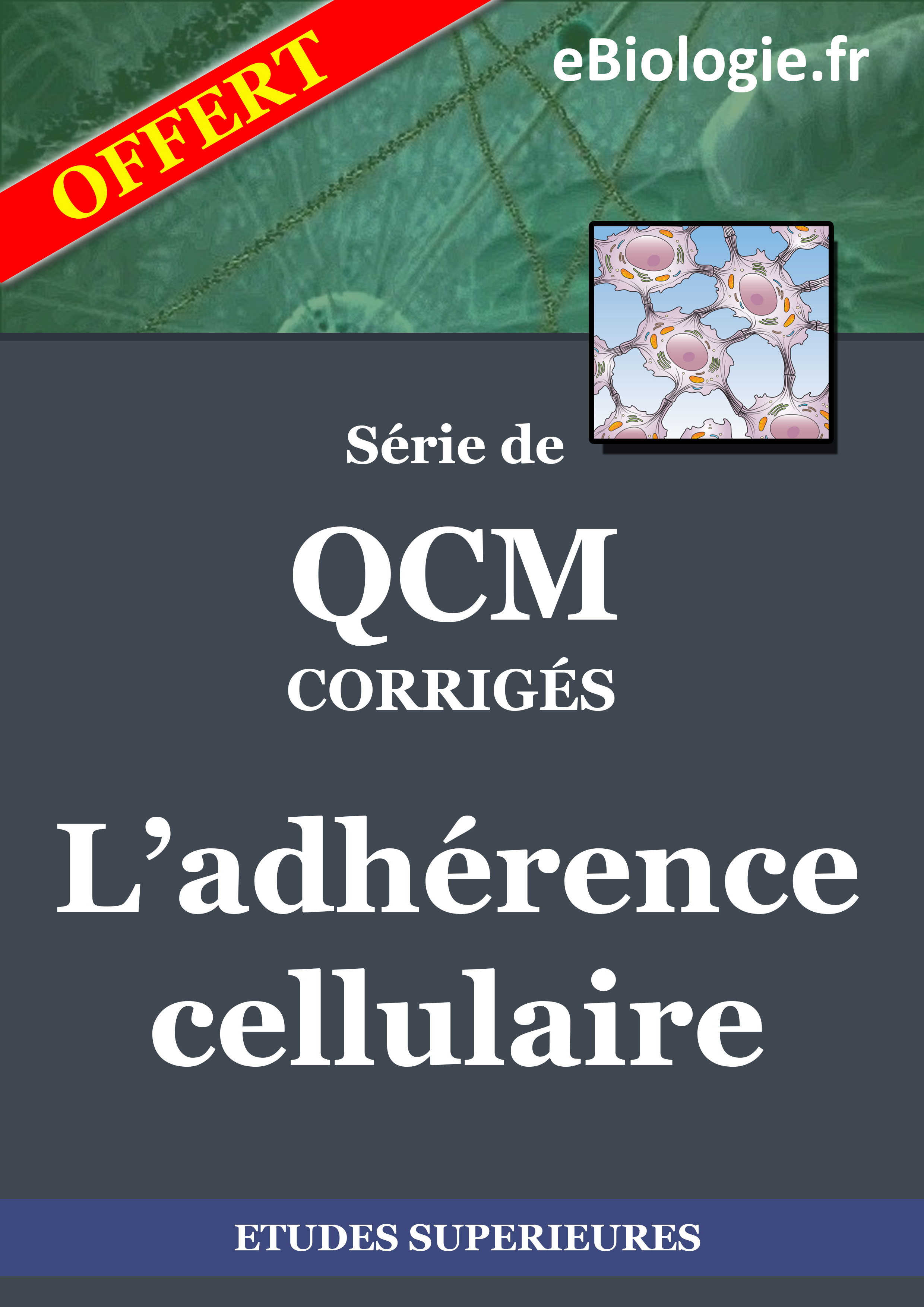Ebook : eBook QCM L'adherence cellulaire
